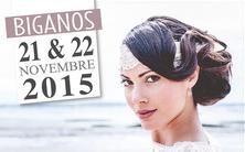 Que faire le week end du 20 21 22 novembre 2015 sur le bassin atlantica - Salon du mariage biganos ...